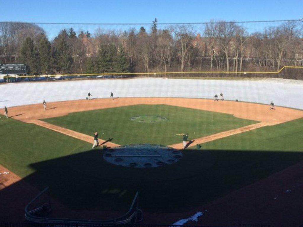 Picture baseballfield-de-iced